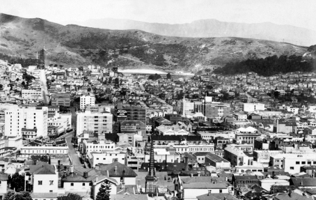 Wellington City View