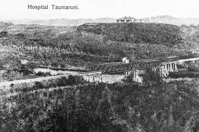 Taumarunui