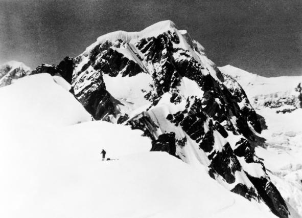 Mt Tasman at head of Fox Glacier