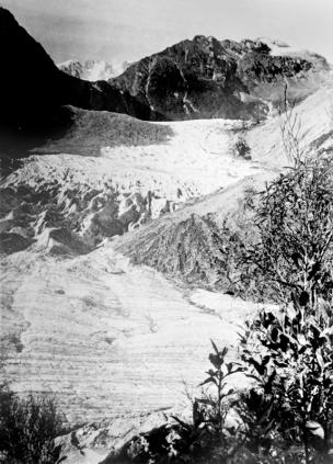 Fox Glacier with Chancellor Dome