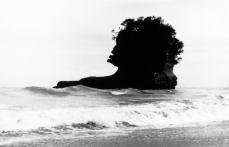 'Maori Chief's head', Punakaiki
