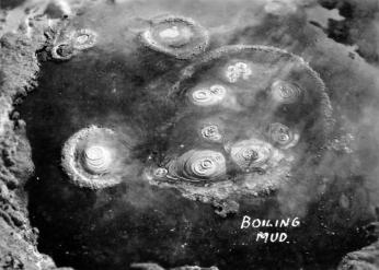 Whakarewarewa (Whaka) Mud Pools