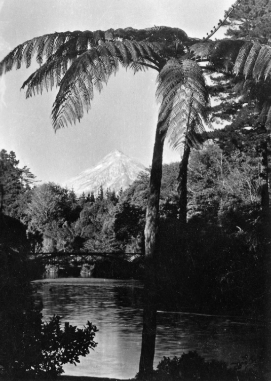 Pukekura Park, New Plymouth