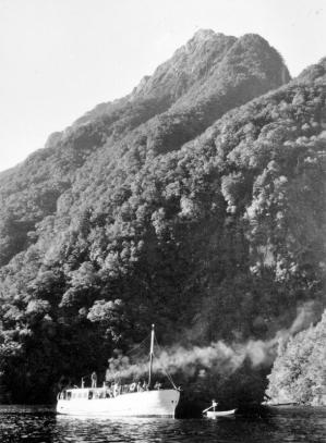 M. V. Tewera by Beech Forest, Lake Te Anau